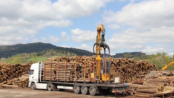 Dlaczego logistyka może być kluczem do sukcesu?